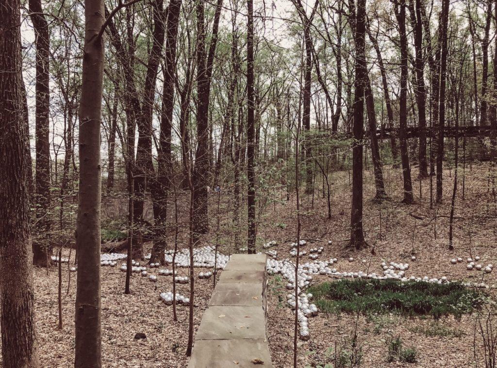 Botanischer Garten von Atlanta
