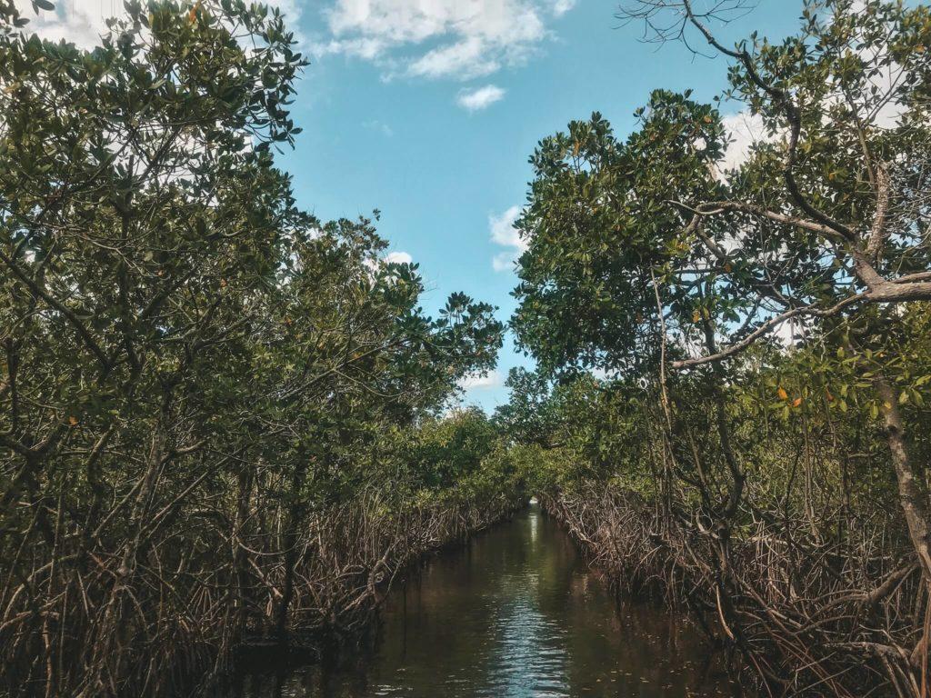 Everglades nationalpark